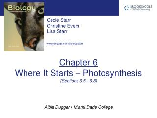 Chapter 6 Where It Starts – Photosynthesis (Sections 6.5 - 6.8)
