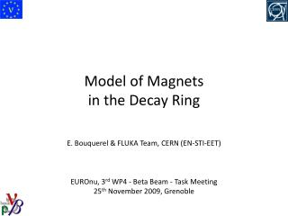 Model of Magnets in the Decay Ring