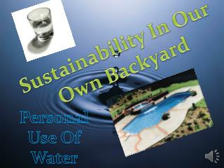 Sustainability In Our Own Backyard