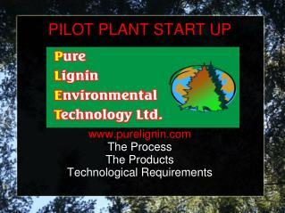 PILOT PLANT START UP
