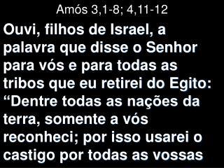 Amós 3,1-8; 4,11-12