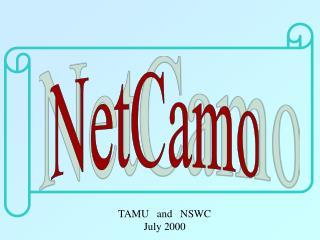 NetCamo