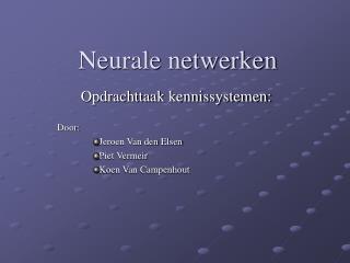 Neurale netwerken