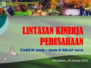 LINTASAN KINERJA PERUSAHAAN TAHUN 200 8 – 2009 & RKAP 2010