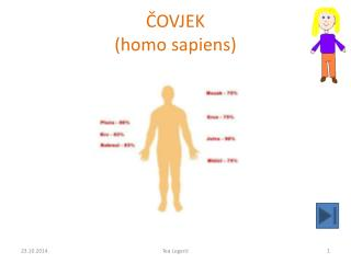 ČOVJEK ( homo sapiens)