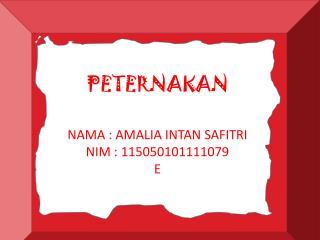 NAMA : AMALIA INTAN SAFITRI NIM : 1150501011111079 E