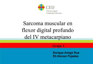 Sarcoma muscular en flexor digital profundo del IV metacarpiano