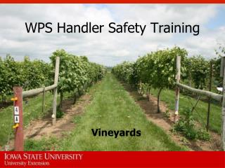 WPS Handler Safety Training