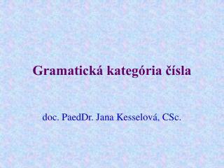 Gramatická kategória čísla