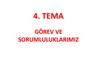 4. TEMA