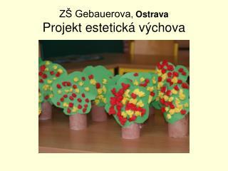 ZŠ Gebauerova , Ostrava Projekt estetická výchova