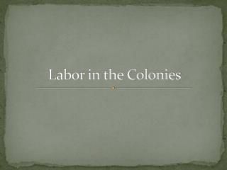 Labor in the Colonies