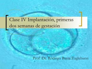 Clase IV Implantación, primeras dos semanas de gestación