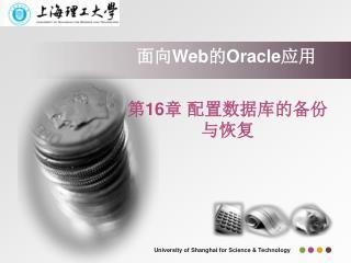 面向 Web 的 Oracle 应用