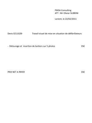 PMSA Consulting ATT : Mr Olivier SUBRINI Lorient, le 22 /02/2011