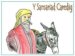 Y Samariad Caredig