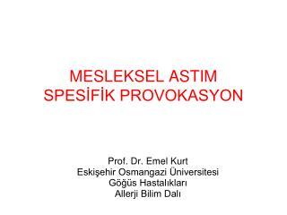 MESLEKSEL ASTIM SPESİFİK PROVOKASYON