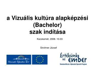 a Vizuális kultúra alapképzési  (Bachelor)  szak indítása