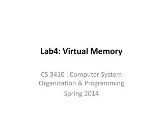 Lab4: Virtual Memory