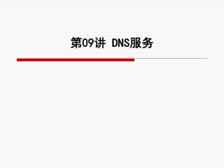 第 09 讲 DNS 服务