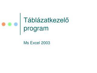 Táblázatkezelő program