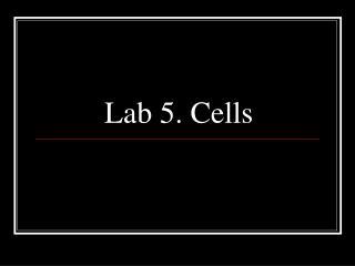 Lab 5. Cells