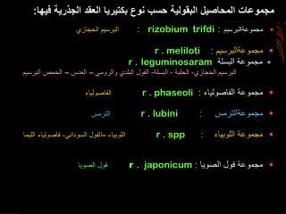 مجموعات المحاصيل البقولية حسب نوع بكتيريا العقد الجذرية فيها: