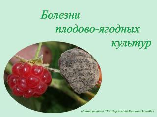 Болезни                 плодово-ягодных   культур
