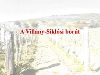 A Villány-Siklósi borút
