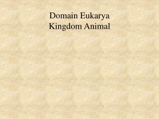 Domain Eukarya Kingdom Animal