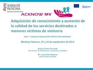 FASE 3 ANÁLISIS LEGISLACIÓN PROTECCIÓN MENORES Meeting Valencia, 23 y 24 de septiembre de 2010