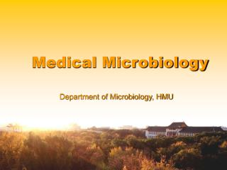 Department of Microbiology, HMU