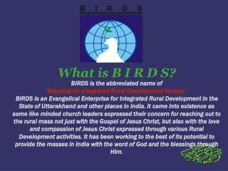 What is B I R D S? BIRDS is the abbreviated name of