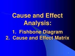 Cause and Effect Analysis:  1.  Fishbone Diagram 2.  Cause and Effect Matrix