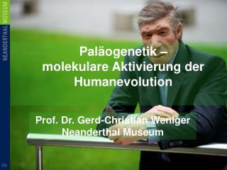 Paläogenetik –  molekulare Aktivierung der Humanevolution