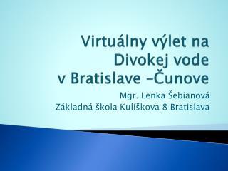 Virtuálny výlet na Divokej vode v Bratislave –Čunove