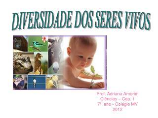 Prof. Adriana Amorim Ciências – Cap. 1 7º ano - Colégio MV 2012