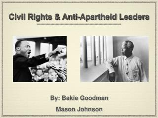 Civil Rights & Anti-Apartheid Leaders