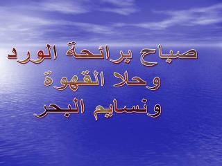 صباح برائحة الورد وحلا القهوة ونسايم البحر