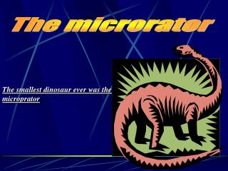 The smallest dinosaur ever was the  microprator