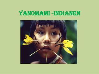 Yanomami -Indianen