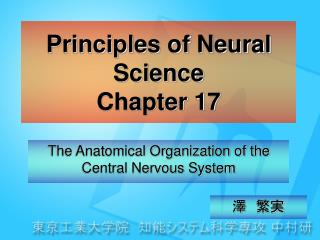 Principles of Neural Science Chapter 17