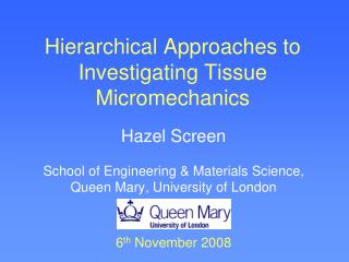 Hierarchical Approaches to Investigating Tissue Micromechanics