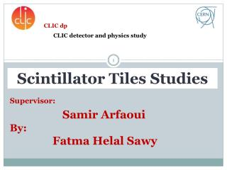 Supervisor : Samir Arfaoui By: Fatma Helal Sawy