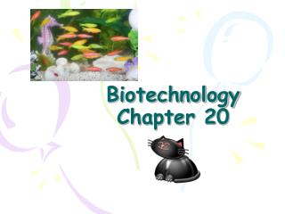 Biotechnology Chapter 20