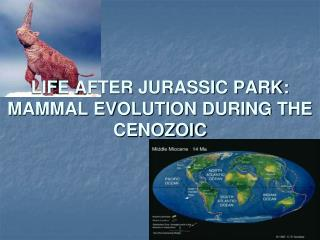 LIFE AFTER JURASSIC PARK: MAMMAL EVOLUTION DURING THE CENOZOIC