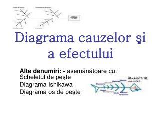 Diagrama cauzelor şi a efectului