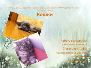 Работу выполнила: ученица 6а класса Стеганцева Софья Руководитель: учитель биологии