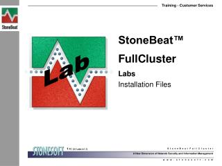 StoneBeat™ FullCluster Labs Installation Files