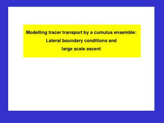 Modelling tracer transport by a cumulus ensemble: Lateral boundary conditions and